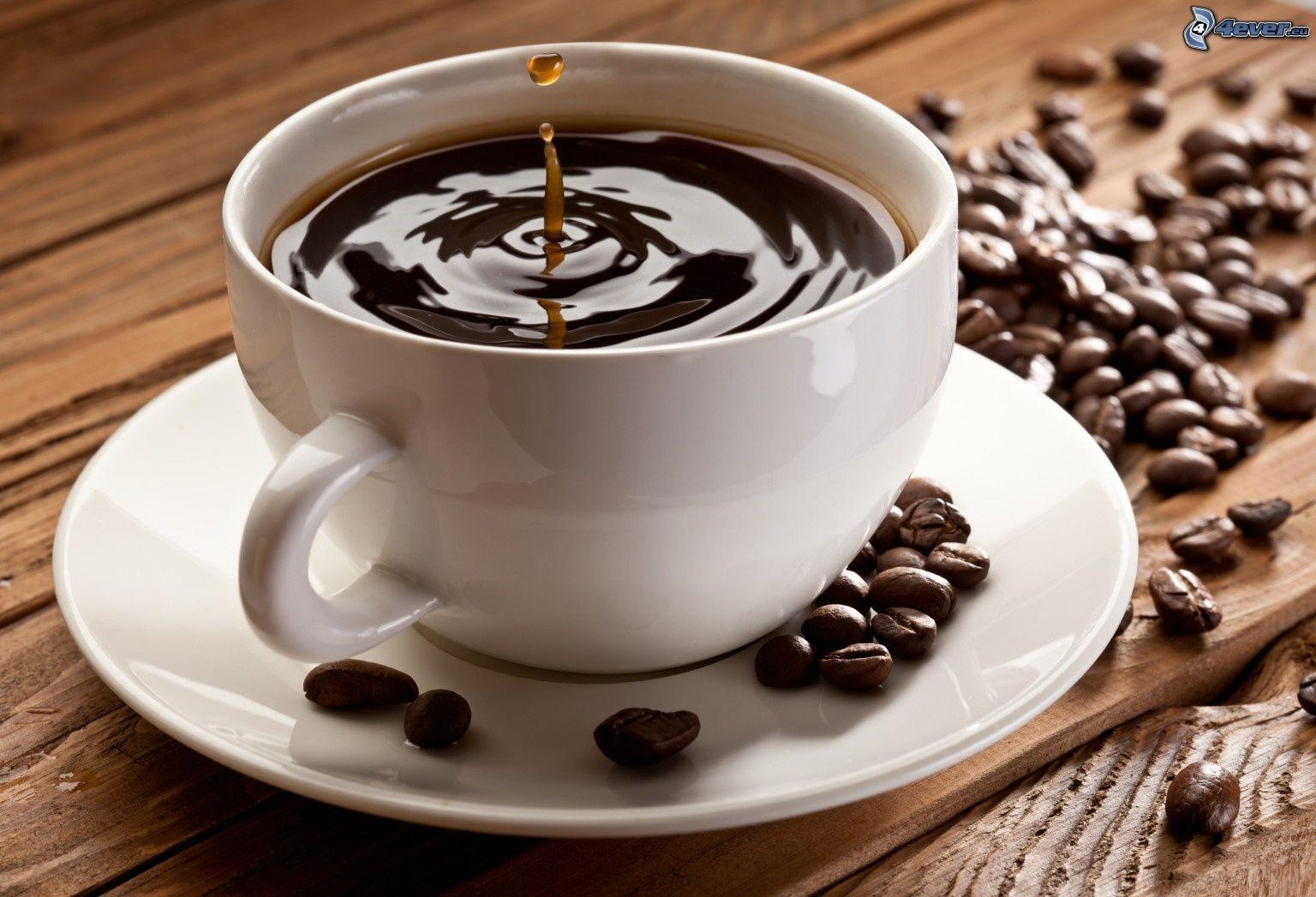Matériel de café au Maroc